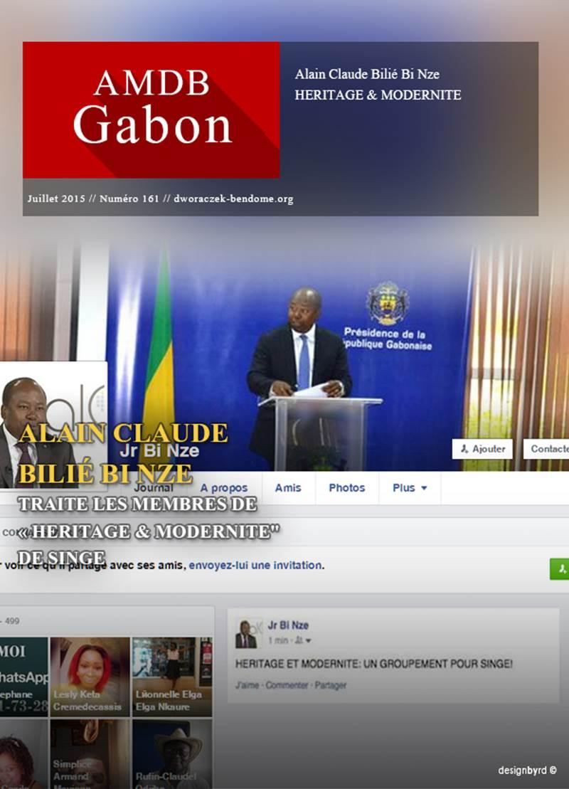 """Gabon-Pour Alain-Claude Bilié Bi Nzé - HERITAGE & MODERNITE"""" : UN GROUPEMENT POUR SINGE !"""