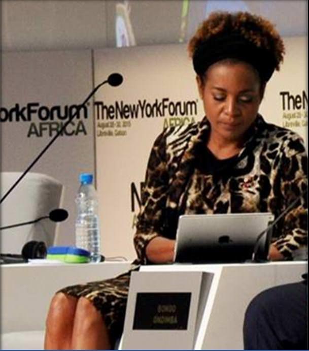 GABON-NYFA 2015 : Michaëlle Jean lance le  Fonds  Francophone  pour l'innovation  numérique