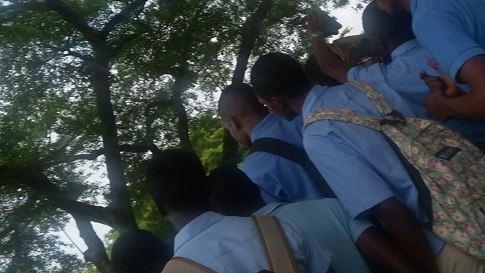 14 élèves du lycée technique Omar Bongo menacés de radiation à vie