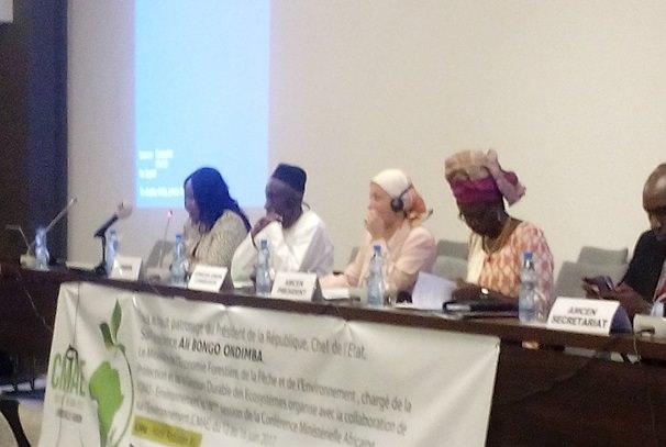 Gabon / Environnement : Libreville accueille l'Afrique