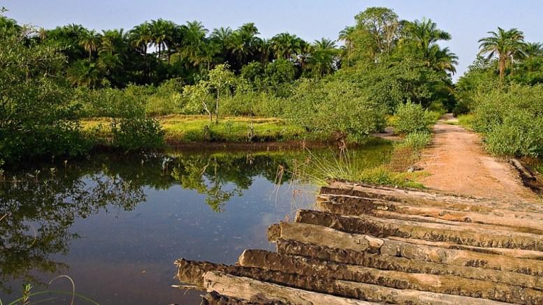 Choc terrible en Casamance : 13 personnes tuées