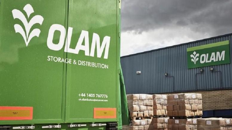 Gabon : Olam n'envisage pas acheter les actifs de la SEEG