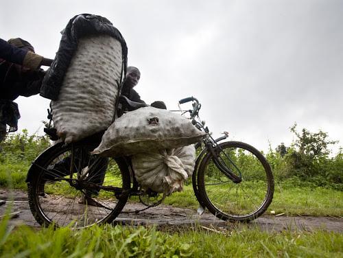 Kikwit : des transporteurs dénoncent les tracasseries sur les routes de desserte agricole