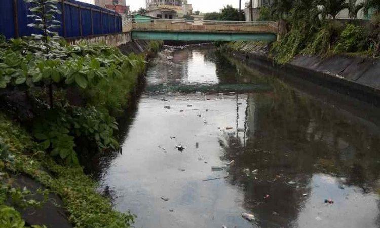Gabon / Déchets : Recycler les bouteilles plastiques