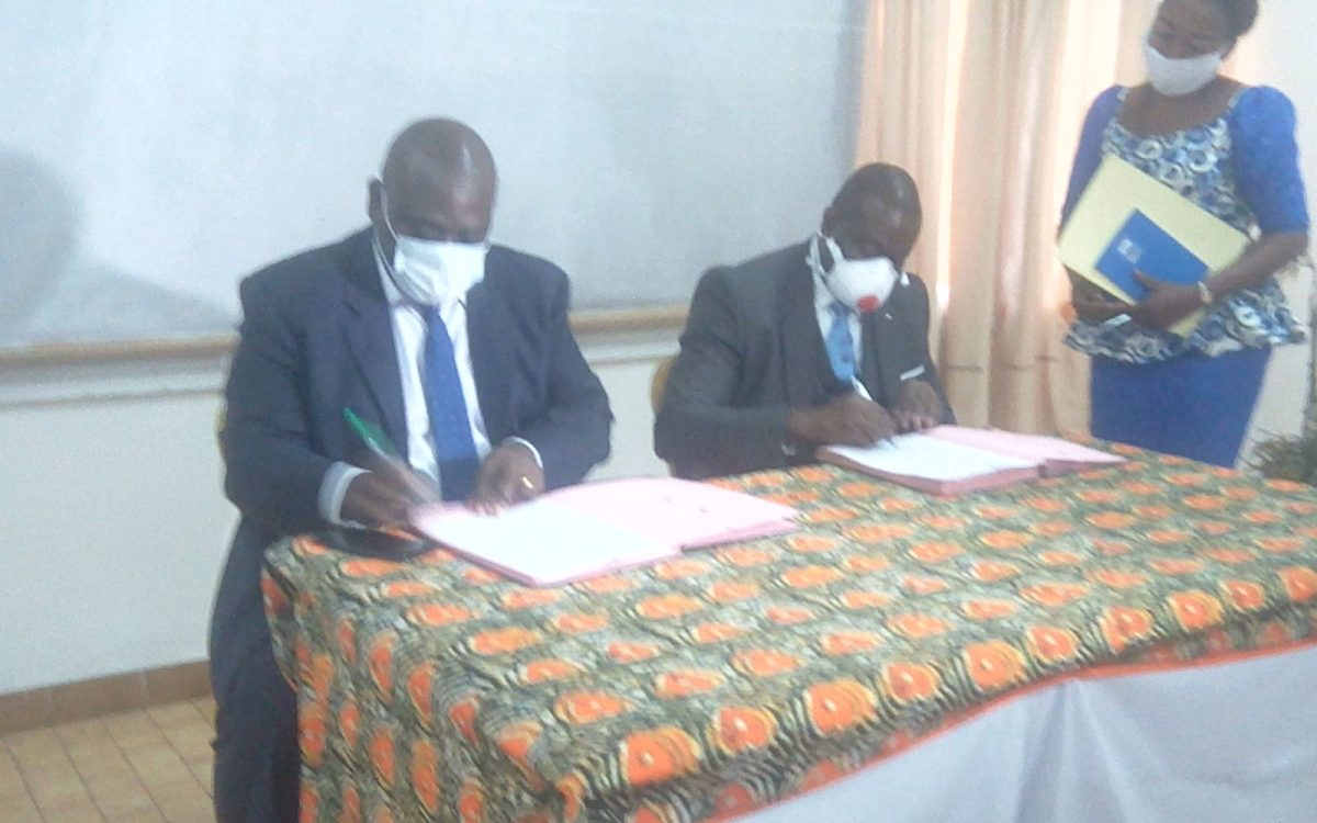 Congo/Recherche Scientifique : Bientôt la transformation du manioc et d'igname de Gamboma en pain