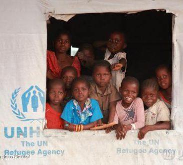 Sud-Ubangi : rapatriement volontaire des 1 183 réfugiés centrafricains