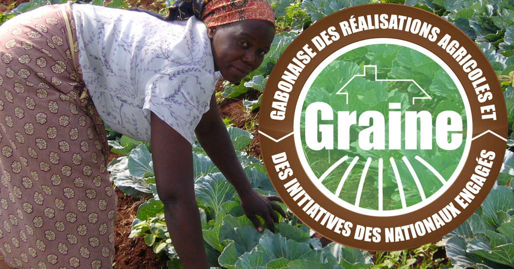 Graine / Ngounié-Nyanga : 741 coopératives agricoles ont disparu !