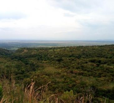 Nord-Kivu : plaidoyer pour l'implication de l'assemblée provinciale dans la sécurisation des éco gardes de l'ICCN