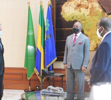 Energie et ressources hydrauliques:Des experts chez Ali Bongo Ondimba