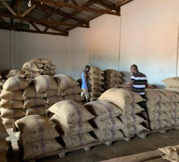 Côte d'Ivoire : Les 6 multinationales exigent du CCC des réductions massives de prix pour acheter 100 000 tonnes de cacao aux mains des exportateurs ivoiriens