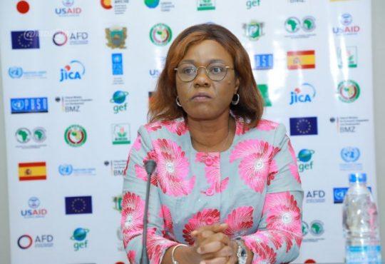 Législatives 2021: Kaba Nialé appelle Nassian à œuvrer pour la paix